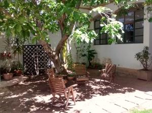 The Beehive Hostel Sucre Garden